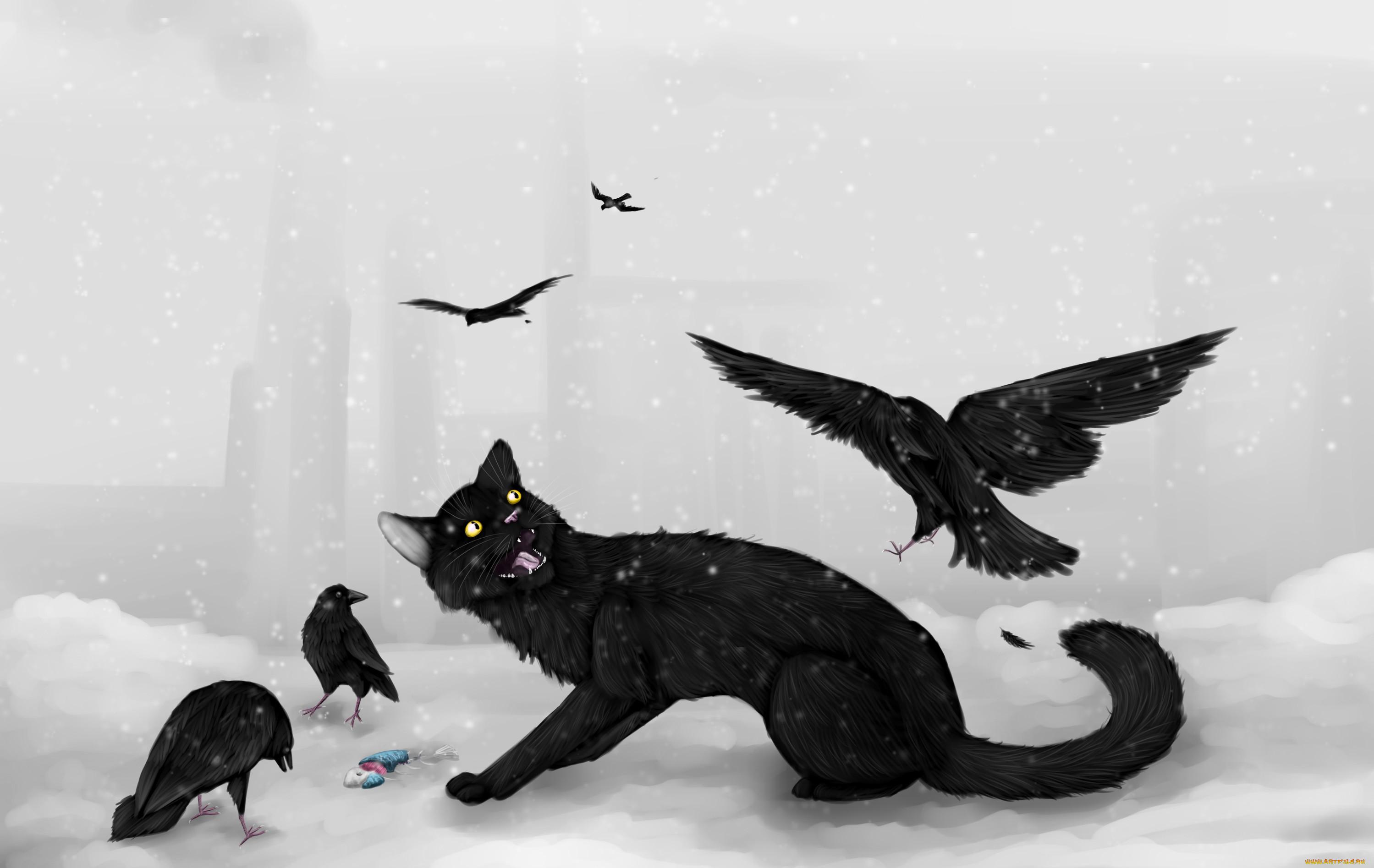период картинка кот с вороной усыпальница